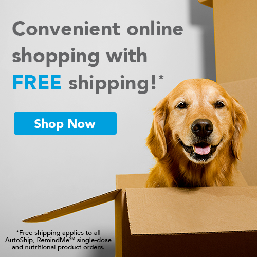 Convenient online shopping with FREE shipping!* *Free shipping applies to all AutoShip, RemindMe(SM) single-dose and nutritional product orders.